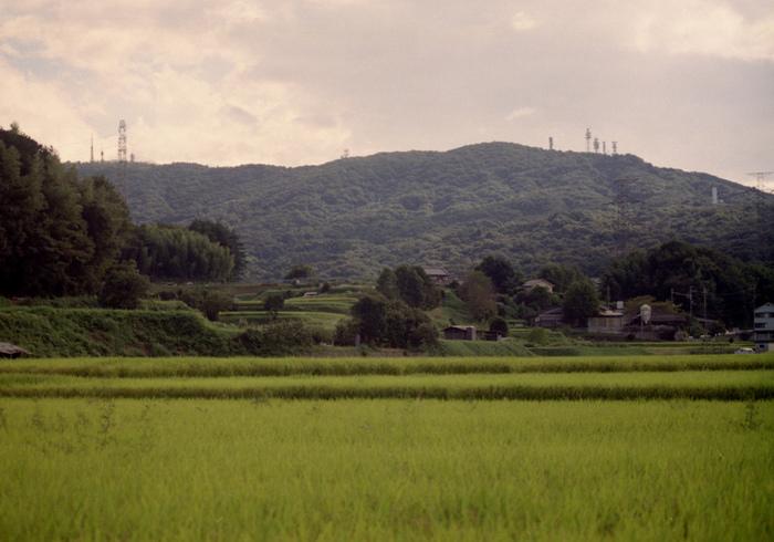 生駒山にあり、周りは自然に囲まれているため、四季折々の風を感じることができます。