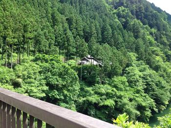 中央に見えるのが森のカフェアースガーデンです。本当に森の中にあるカフェです。