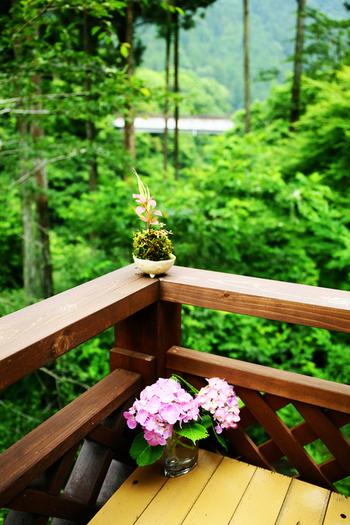澄みきった空気、色鮮やかな自然。「山カフェ」最高の癒しスポットだよ!