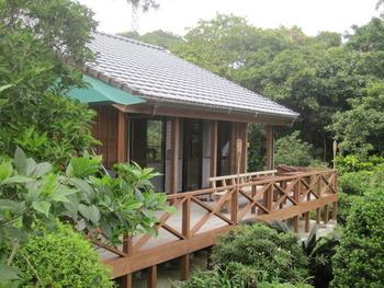 テラスから森分け目に海が見えます。のんびり散策できる3000坪の庭園は手造りです。