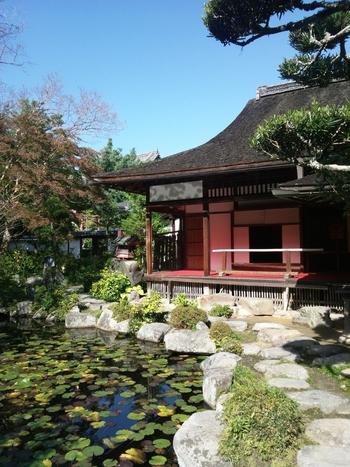 中将姫剃髪の地として知られる中之坊は、写仏道場と美しい庭園があることで有名です。国の名勝にも指定されている中之坊の庭園は、江戸時代の大名、片桐貞昌によって作庭された池泉回遊式庭園です。