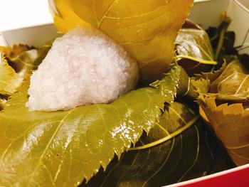 """京都(関西)の一般的な「桜餅」は、道明寺粉を用いた生地でこし餡を包んだものです。  """"道明寺粉""""とは、もち米を水に浸した後に蒸し上げ乾燥したものですが、店それぞれで、味わいが異なります。 道明寺粉の粒の大きさや生地にするまでの炊き上げ方、手の加え方、餡とのバランス等など。独自の加減と製法があり、「桜餅」といっても、味わいは様々で、実に奥深いものです。  【画像は「鶴屋寿」の桜餅】"""