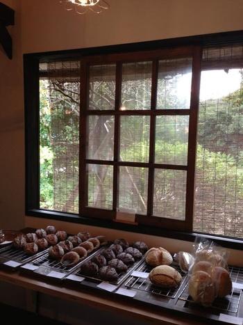 季節の風景をバックに美味しそうに並ぶ天然酵母のパンたち。  原材料は、北海道や九州、ドイツのオールオーガニックで、卵や白砂糖、乳製品は使われていません。お子様にもやさしい安心なパンですね。