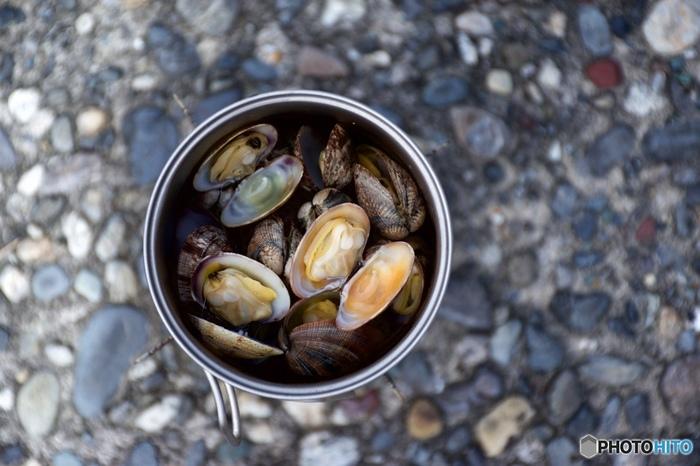 特にビタミンB12含有量は貝類の中でもトップクラス!貧血や神経痛、慢性疲労などを改善する効果が期待できます♪さらに、うまみ成分であるタウリンは、アルコールの代謝を助ける働きがあります。アルコール障害を改善し、肝機能の促進や、血液を綺麗にしてくれる、健康には欠かすことのできない成分なのです。