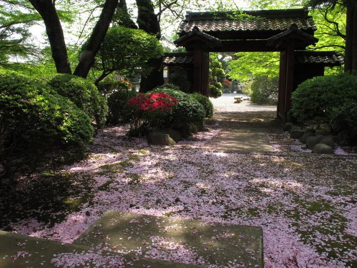 サクラをはじめ季節ごとにさまざまな花も見られますので、お散歩的な小旅行にも最適です。