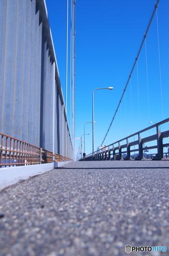 車道に併設されているサイクリングロード。海風を感じながら走ると「爽快」そのものです。