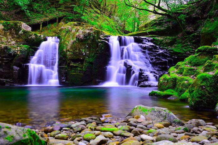 """赤目四十八滝は""""平成の名水百選""""や""""日本の滝100選""""、さらに""""森林浴の森100選""""にも選ばれるなど、その美しさは折り紙付き!苔と自然が織りなす景観に触れてみて下さい。"""
