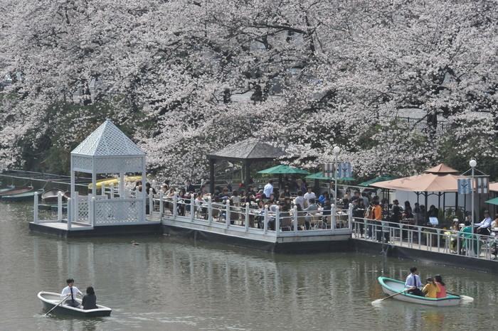 都会の中にいることを忘れさせてくれる自然の中にあり、春はテラス席が大人気。