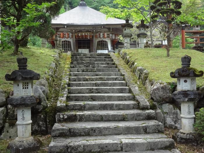 兵庫県の瀬戸内海と日本海のちょうど真ん中にあるお寺「瑠璃寺」には、ヒロハシノブゴケなど絶滅危惧種が多数生育しています。学術的にも貴重な場所です。
