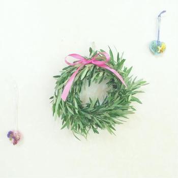 カットしたオリーブの葉は、リースにするのがおすすめ。お部屋のグリーンとしてはもちろん、冬にはクリスマスリースに。リボンの色やデコレーションでハンドメイドリースも楽しまれてみてはいかがでしょうか。