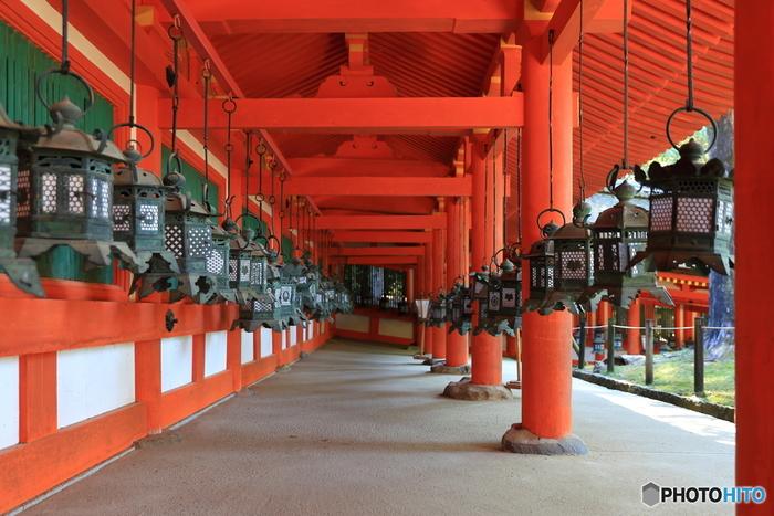 1993年に「法隆寺地域の仏教建造物」の一部として世界遺産に登録された「春日大社」。現在20年に1度の「国宝御本殿特別公開」と「御仮殿特別参拝」の真っただ中! この機会にぜひ一度足を運びたいですね。