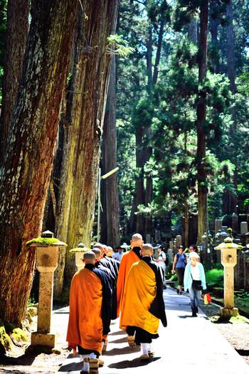 樹齢約700年の杉木立がそびえる参道は、参拝客の姿がちらほら。