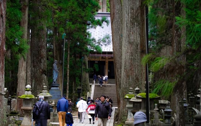 2004年に「紀伊山地の霊場と参詣道」の一部として世界遺産に登録された「高野山」は、100ヵ寺以上の寺院が密集する宗教都市。山内は「壇上伽藍(だんじょうがらん)」と「奥之院」を二大聖地とし、現在も人々の信仰を集めています。2015年で開創1200年を向かえ、さらに盛り上がりを見せています。