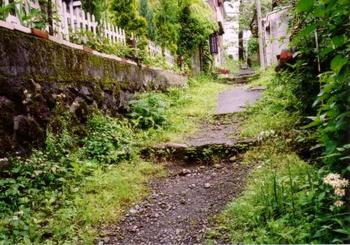 強羅駅から、緑溢れる小道を歩いていくとたどり着くのが「箱根写真美術館」。