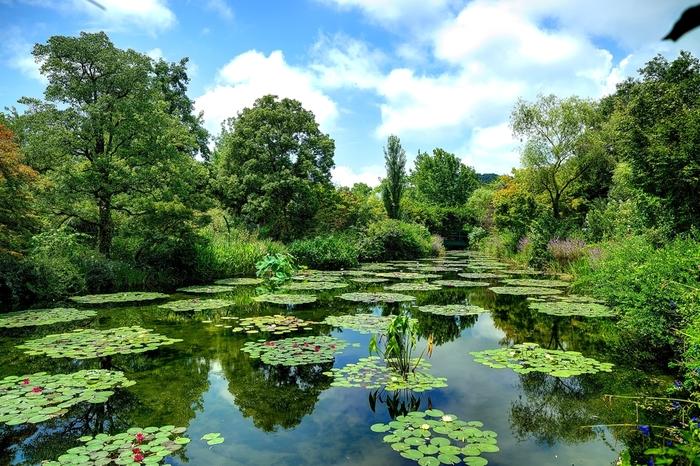 「モネの庭」(高知県北川村)/モネが絵を描くためにフランスの自宅に造った庭を、高知の自然の中に再現。四季の花々が咲き、モネが描いた数々の名作の世界を実際に目にすることができます。