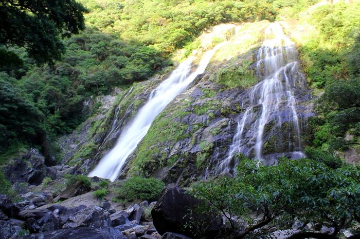 日本百選の1つで、落差が88mもあり、パワースポットとしても有名な場所です。  少し遠めから見た大川の滝。