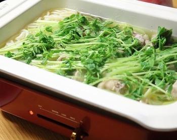 塩麹を揉み込んだ鶏肉や野菜などを鍋に入れたら、ごらんのように豆苗でフタをするようにして煮ます。お肉を入れることで栄養バランスにも優れたヘルシー鍋になります。