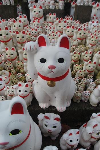 豪徳寺は、「招き猫寺」とも呼ばれており、境内にはこんなに沢山の招き猫が!実は、ゆるキャラとして有名なひこにゃんのモデルもコチラの招き猫なんですよ。