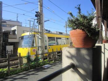 ナポリピッツァ協会認定の、ピッツァ職人が石窯で焼くナポリ・ピッツァが楽しめ、テラスからは世田谷線の電車も見えます。