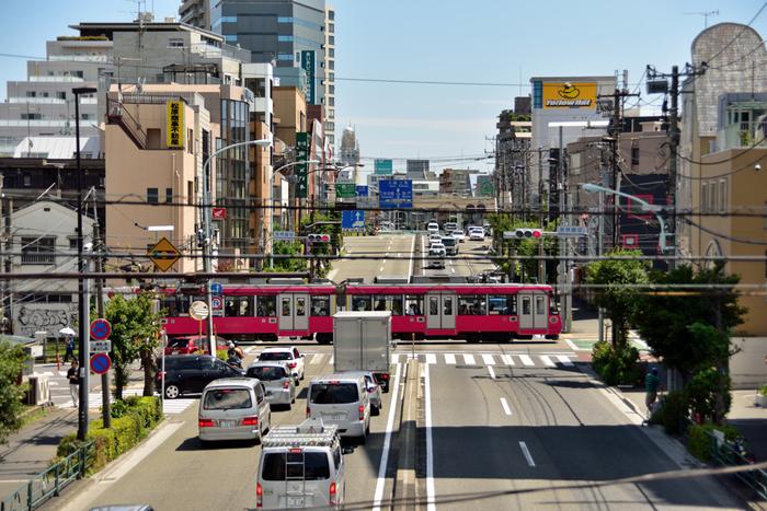 東京都内では、都電荒川線とともに残っている路面電車形式の軌道線です。