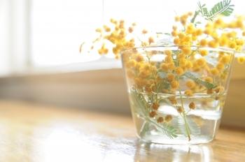 春を告げる、菜の花・ミモザ・たんぽぽのように。着こなしに『イエロー』を取り入れて
