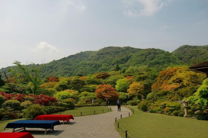 【園内入り口のほど近くにある茶屋。(画像は、新緑が美しい5月頃。)】