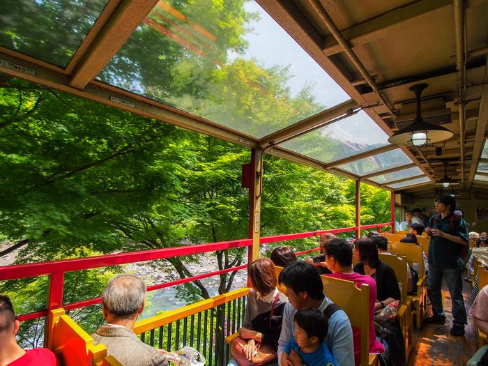 【トロッコ列車内の様子。季節に彩られる景色を楽しみながら走るご機嫌な列車です。】
