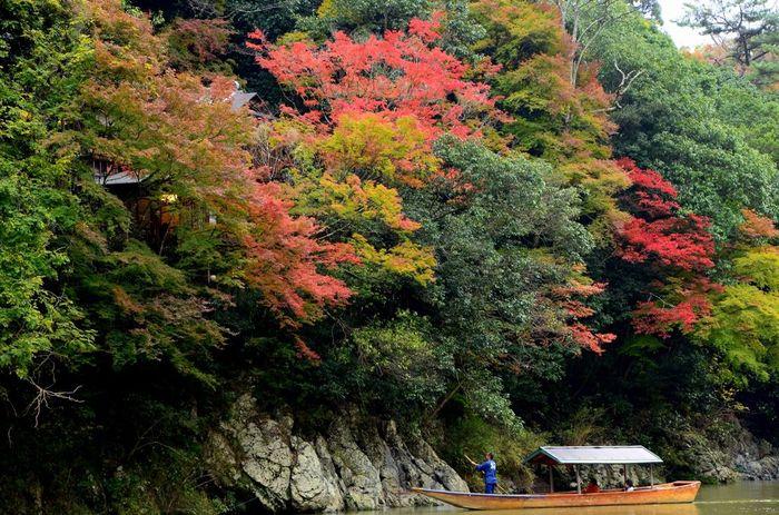【「保津川下り」は、保津峡を渡る風と景色を楽しむ2時間の船旅。】