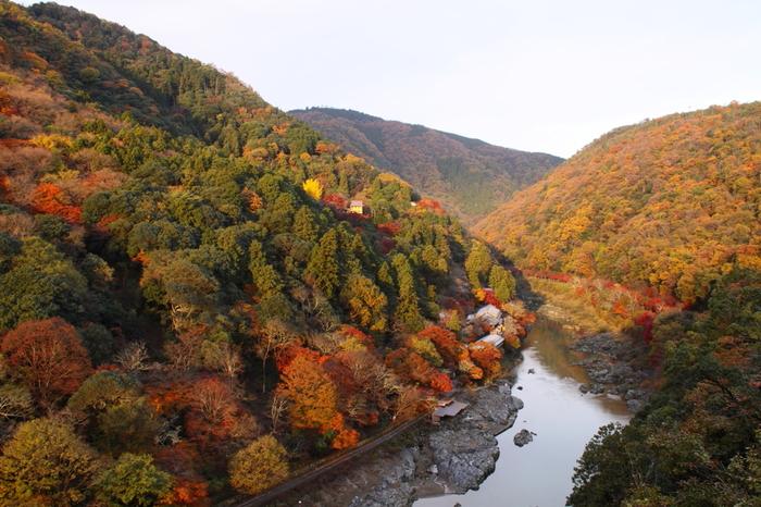 紅葉は、樹木の冬支度。 旅も、過去の澱を落とし、来る季節に備えるもの。  澄み渡った空の下、照り輝く木々を眺め、 景色にとけ込むように旅をすれば、 忙しい年の瀬も、来る年も、 心静かに過ごせるかもしれません。  「嵐山」は、自然豊かで風雅な地。 訪れれば、絵巻のようなその眺めに、きっと魅了されるはず。