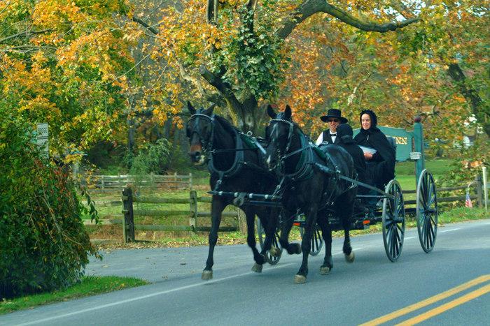 アーミッシュの人々は、自動車に乗ることはありません。馬車や自転車などで移動します。  アーミッシュのコミュニティ周辺には、写真のように一般公道を馬車で行き交う姿が見られます。