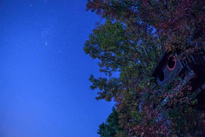設備も整っているので、朝から晩まで快適な森の暮らしが体験できますよ。