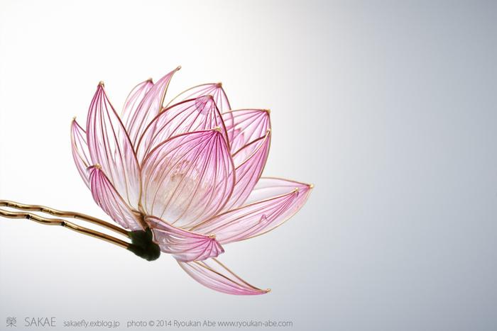 透けて見える花托もまた美しく。こんなにも透明なのに存在感のある花です。 Photo by Ryoukan Abe (www.ryoukan-abe.com)