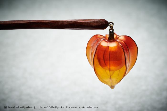 やや赤みが強いこちらが「輝血」。輝血もまた鬼灯の別名のひとつ。透き通る萼に守られた朱色の実は、まるで夕陽を閉じ込めたよう。 Photo by Ryoukan Abe (www.ryoukan-abe.com)