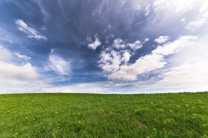 【風薫る(かぜかおる)】爽やかな夏の南風をほめたたえた季語。/【青嵐(あおあらし)】夏、緑の林や草原を吹き渡る風のことをいいます。