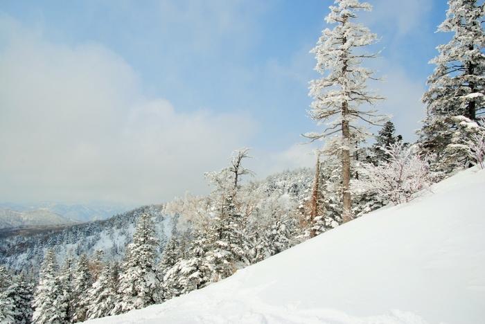 東北No.1のパウダースノーともいわれ、雪質がいいことで知られる福島・裏磐梯の「グランデコスノーリゾート」。雄大な眺めはもちろん、ゴンドラ山頂から約3.5kmの初級向けの超ロングコースがあるのも魅力です。5月6日(土)まで営業予定。