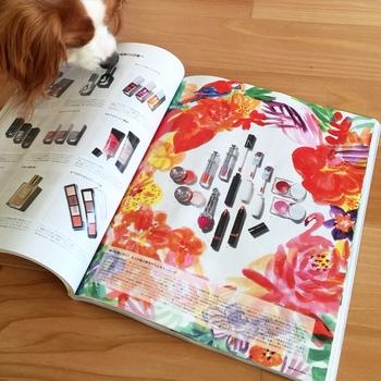 あんずさん、飼い主さんのイラストを発見!? こちらは『Numero TOKYO』の1カット。女性誌の挿絵も手がけられています。