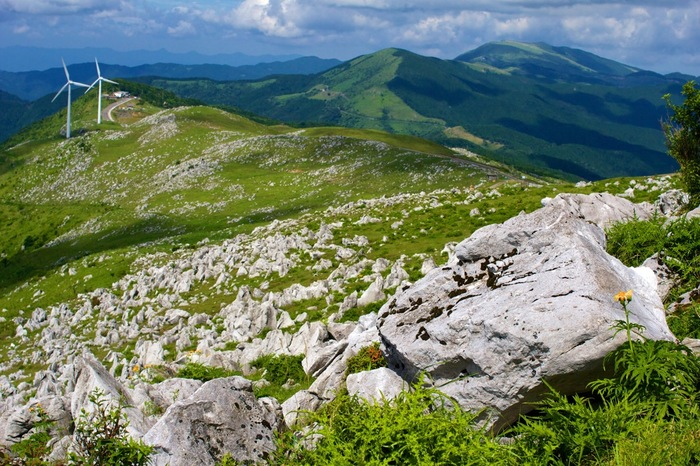 絶景が続く道は、ツーリングにも人気の道です。 新鮮な空気を、体いっぱい吸い込めるのもおススメポイントです。
