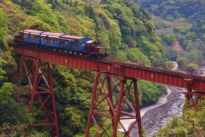 このトロッコ列車に乗れば、南阿蘇の名所をぐるりと廻ることができるそうです♪大自然に囲まれながら、のんびり列車の旅を楽しみたい方にオススメ。