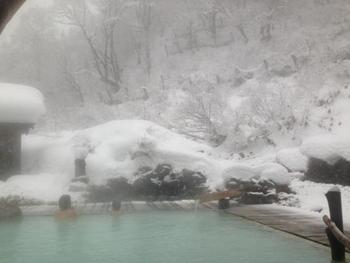 広い露天風呂はとても感動的。日本秘湯を守る会に入っている秘湯です。炭酸水素泉や打たせ湯を楽しめます。