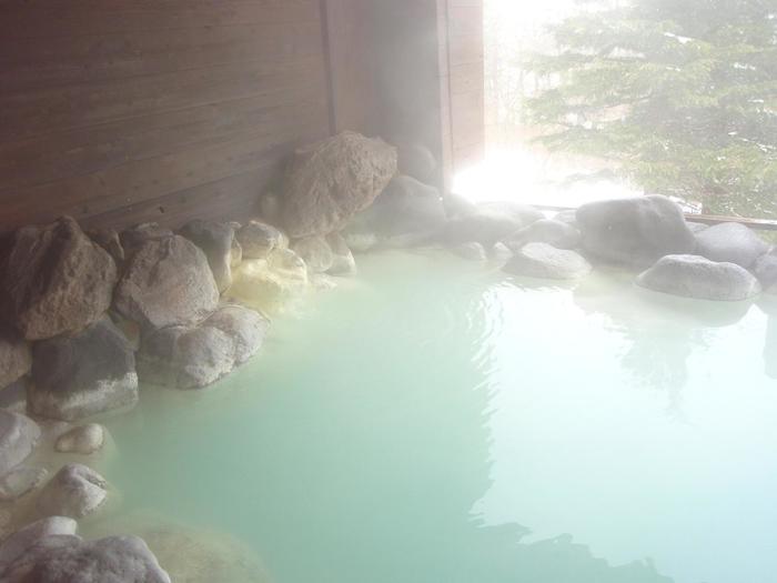白く濁った硫黄のお湯にゆっくりつかれる、那須湯本温泉「ホテルビューパレス」。