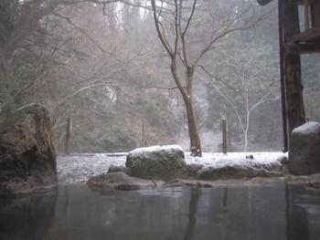 自然豊かななかにひっそりとたたずむ、「お宿 花風月」。回廊を通って温泉棟へ行くまでの間にも、早速癒されること間違いなし。