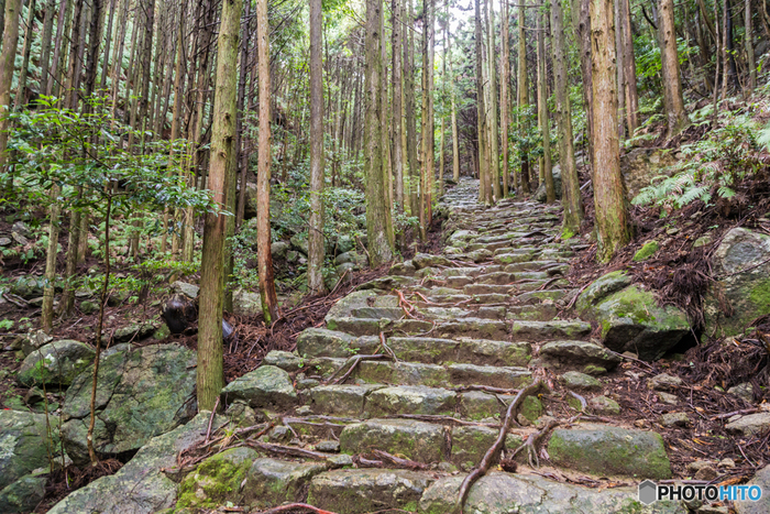 リアス式海岸のきれいな景色、日本人の心のふるさと伊勢神宮、世界遺産の熊野古道、鈴鹿サーキットや長島スパーランドなどのアミューズメントパークもあり、観光スポットとしても人気です。