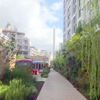 いかがでしたか?細長い敷地に建てられた個性的な5棟のショップはどれもとても魅力的。グルメ、ショッピングどちらもたっぷり楽しめるので、この記事に興味を持たれた方はぜひ訪れてみてください。都心にいるとは思えないほど緑がいっぱいの空間に癒やされますよ。