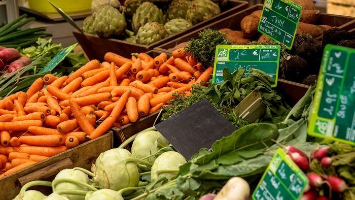 ・緑の野菜(ほうれんそう、ブロッコリーなど)緑の素はカロテノイド。β1カロテンも豊富に含みます。 ・黄色い野菜(にんじん、かぼちゃなど)はβカロチンを多く含みます。 ・赤い野菜(トマトやスイカなど)トマトに含まれるリコピンには強い抗酸化力があります。 ・白い野菜(たまねぎ、大根など)ビタミンBやビタミンCが豊富。