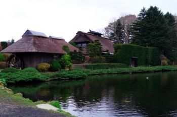 エリアには八カ所の湧水池があります。もともとは富士登山の禊が行われていたため、パワースポットとも言われています。富士の澄んだ水で心をきれいにして、改めて雄大な富士山パワーをいただいちゃいましょう♪