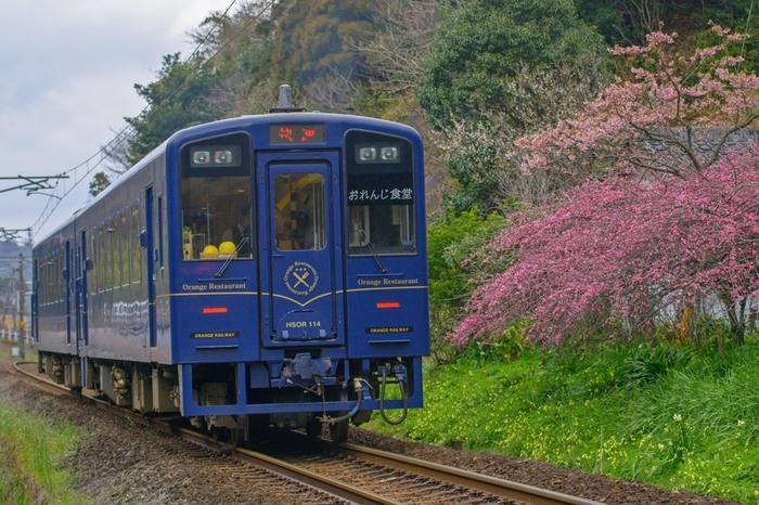 """九州の西海岸を走る肥薩おれんじ鉄道の「おれんじ食堂」は、地元の食材をふんだんに使った、まさに""""走るレストラン""""。美しい景色を眺めながら、沿線ごとの旬の素材を使ったフルコースが楽しめます。"""