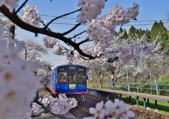 のと鉄道の「のと里山里海号」は、能登の風情あふれる客車で世界農業遺産に選定された沿線を走ります。週末中心の「ゆったりコースと平日の「カジュアルコース」があります。