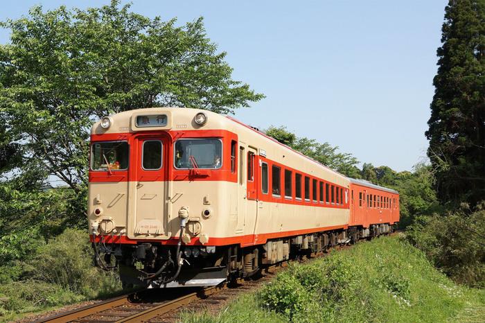 いすみ電鉄の「ストラン・キハ」は、昭和の国鉄で走っていたレトロな雰囲気の「キハ28」を使用したグルメ列車。千葉ののどかな田園風景を楽しみながら、本格的な料理を味わえます。