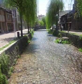 白川は、平安神宮の近くから四条通の辺りに流れている川です。両岸に柳の木が植えられていて、京都らしい風情のある景色を撮影することができます。ウエディングフォトスポットとしても人気なんです。