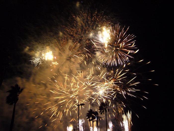 「和歌山マリーナシティ」で行われる、新年の始まりを盛大に祝う花火ショー。クラシック音楽とともに、打ち上げ花火や特殊効果花火など迫力満点の音と光の競演が夜空を彩ります。(花火開催日:12月31日深夜12時過ぎ)